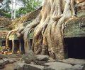 gallerie-photos-voyage-au-cambodge