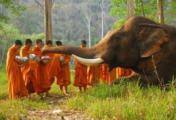 voyage-cambodge-hors-de-route