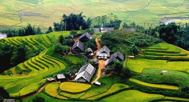 beax-paysages-a-sapa-vietnam
