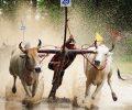 belle-photo-de-la-fete-villageois-a-chaudoc-vietnam