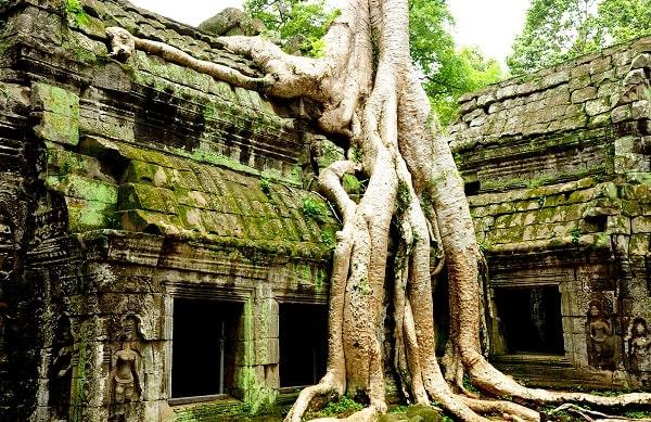 circuit temple d'angkor