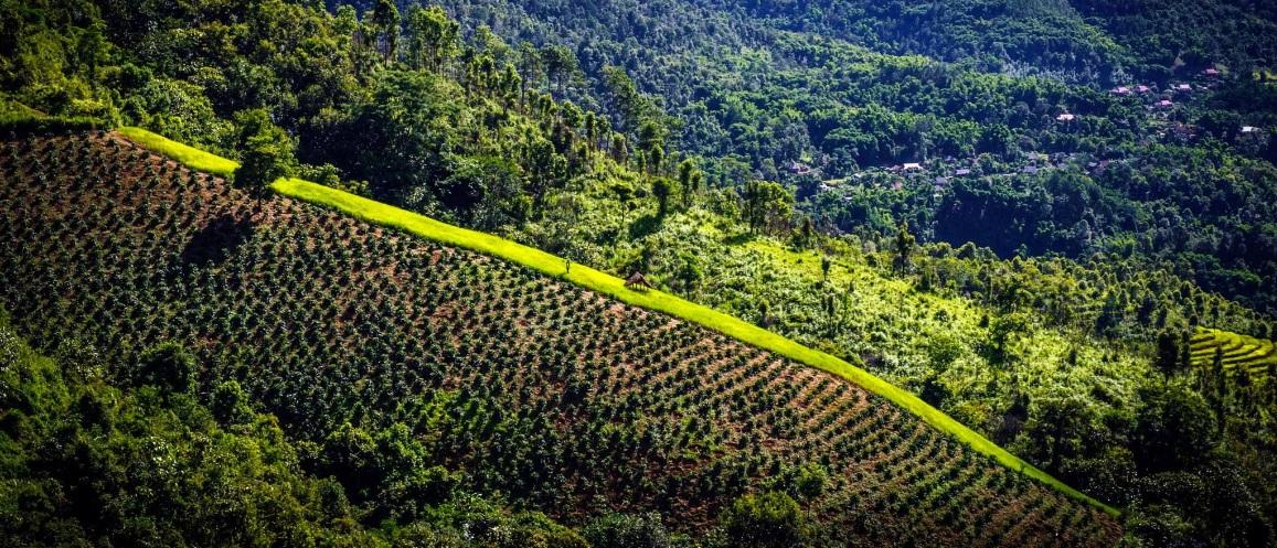 circuit-vietnam-laos-cambodge