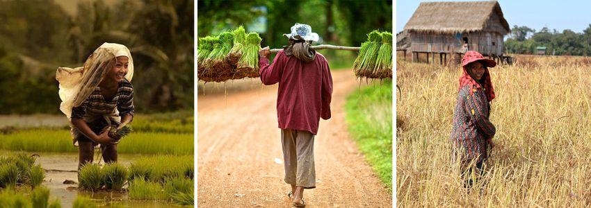 photo-circuit-ethnie-du-cambodge