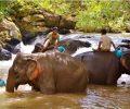 voyage-aventure-cambodge-que-faire
