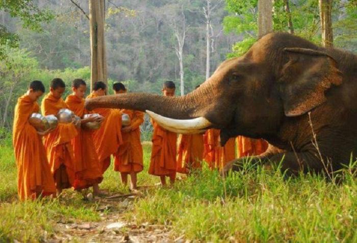 cambodge-hors-des-sentiers-battus